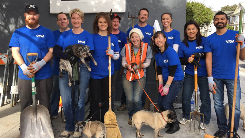 Visa employees volunteering with their pets